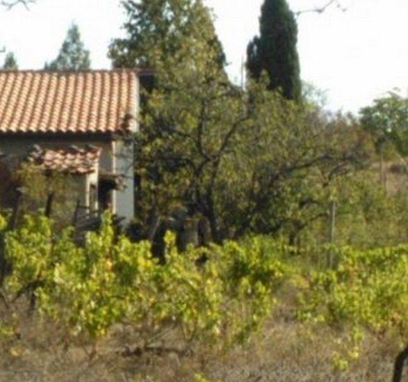 Immobilier burgas burgas bulgarie maison 30m2 jardin for Jardin 700m2