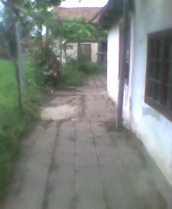 Immobilier apriltsi pazardzhik bulgarie maison 50m2 for Jardin 800m2