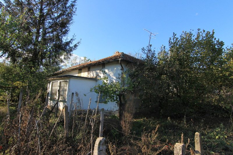 immobilien haus in kovachitsa montana bulgarien 80 qm haus 1000 qm garten sehr gro es. Black Bedroom Furniture Sets. Home Design Ideas