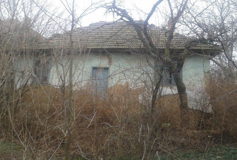 Immobilier novo selo vidin bulgarie maison de 80m2 2 for Jardin 700m2