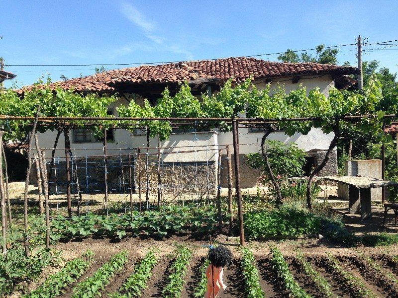 Immobilier levski pazardzhik bulgarie maison de 70m2 for Jardin 700m2