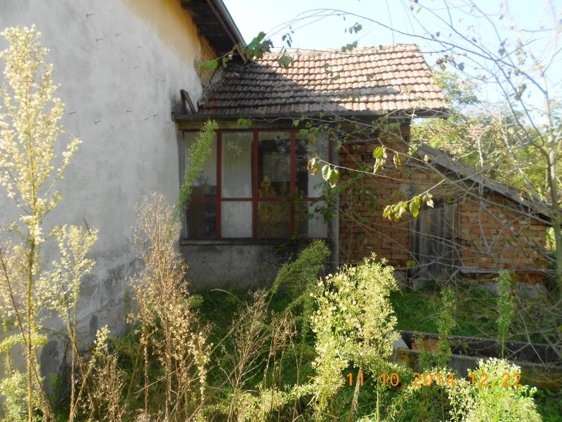 immobilien haus in zagrazhden pleven bulgarien 50 qm bungalow 3 zimmer 1900 qm 700 m von. Black Bedroom Furniture Sets. Home Design Ideas