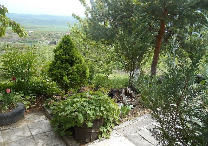 Immobilier aytos burgas bulgarie maison de 80m2 for Jardin 700m2