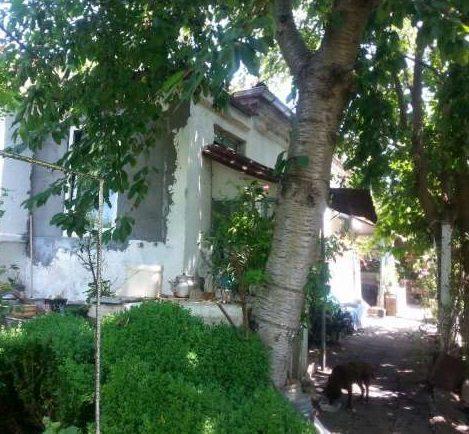 immobilien haus in konstantinovo burgas bulgarien 60 qm haus 3 schlafzimmer 960 qm garten. Black Bedroom Furniture Sets. Home Design Ideas