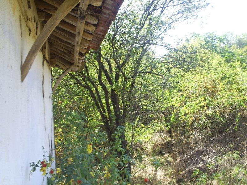 immobilien haus in yablanitsa lovech bulgarien 53923 qm garten ruhigen dorf gute lage. Black Bedroom Furniture Sets. Home Design Ideas