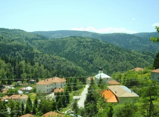 immobilien haus in manastir plovdiv bulgarien 180 qm haus 4 schlafzimmer 300 qm garten. Black Bedroom Furniture Sets. Home Design Ideas