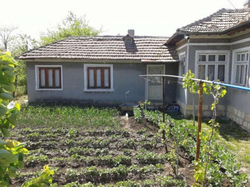 immobilien haus in zheglartsi dobrich bulgarien 70 qm bungalow 1000 qm garten 40 km dobrich. Black Bedroom Furniture Sets. Home Design Ideas