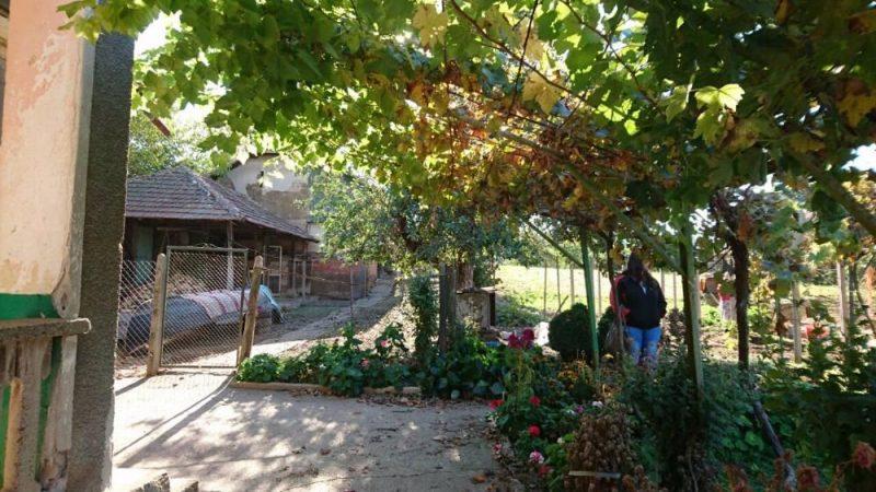immobilien haus in traykovo montana bulgarien haus mit sommerk che und garten zum verkauf. Black Bedroom Furniture Sets. Home Design Ideas