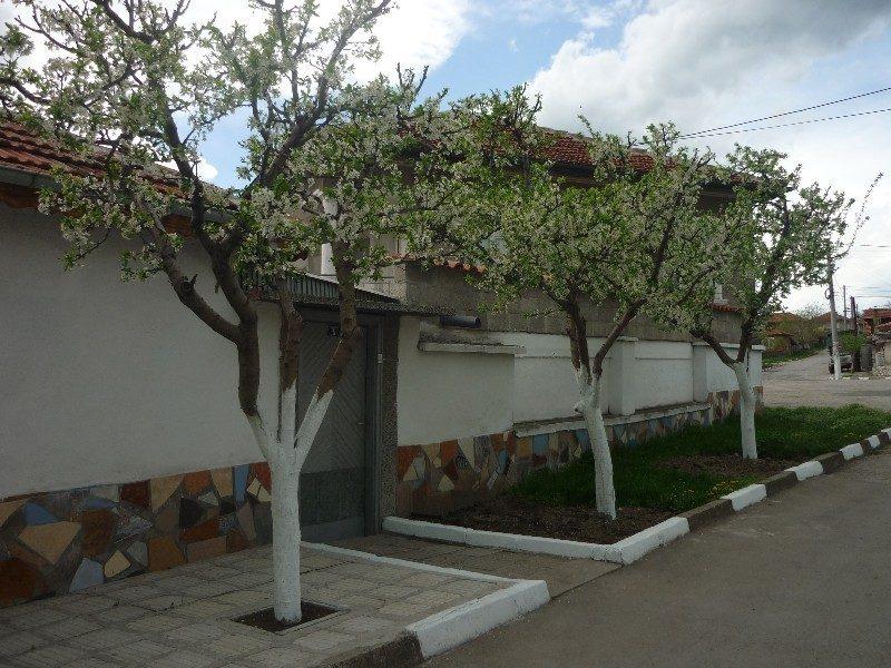 immobilien haus in yabalkovo haskovo bulgarien haus mit sommerk che 910 qm garten mit. Black Bedroom Furniture Sets. Home Design Ideas