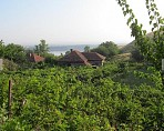 80 sq.m. house, 2 bedrooms, 2000 sq.m. garden, grape vines, river Danube views