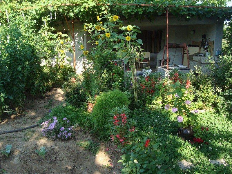 Property House In Ivanski Shumen Bulgaria 3 Bedrooms