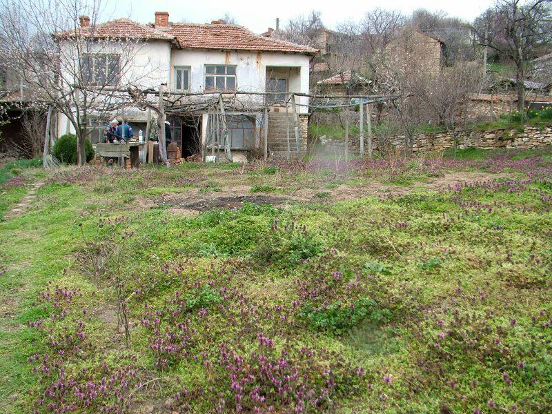 immobilien haus in kamilski dol haskovo bulgarien 100 qm haus 800 qm land zu fu zum. Black Bedroom Furniture Sets. Home Design Ideas